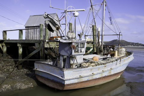 Thumbnail image for New rules hit New Zealand fishing industry