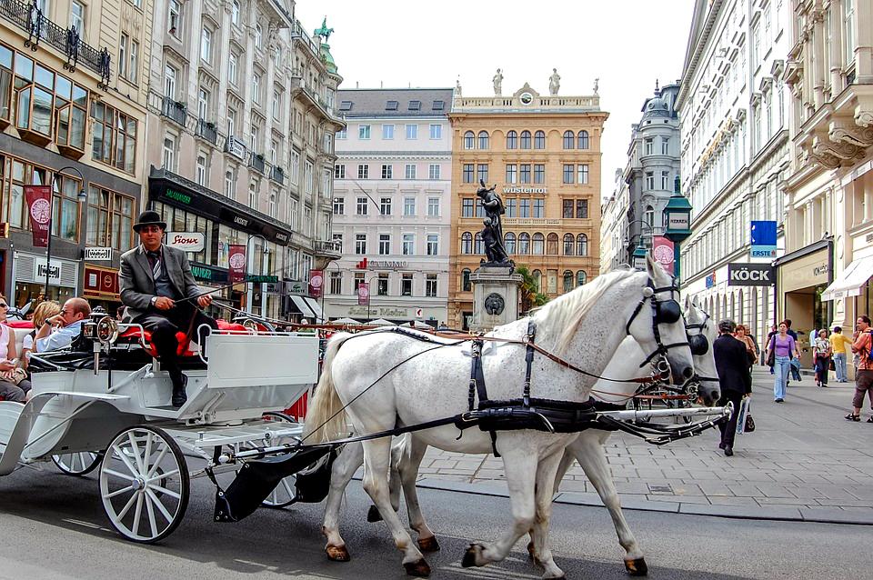 vienna-horse-buggy-europe