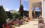 28-Tala-villa-for-sale-Cyprus.jpg